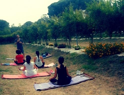 Corsi di Yoga tra i Melograni Martino